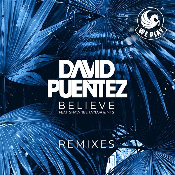 David Puentez MTS Shawnee Taylor: Believe (feat. Shawnee Taylor & MTS) [Remixes]